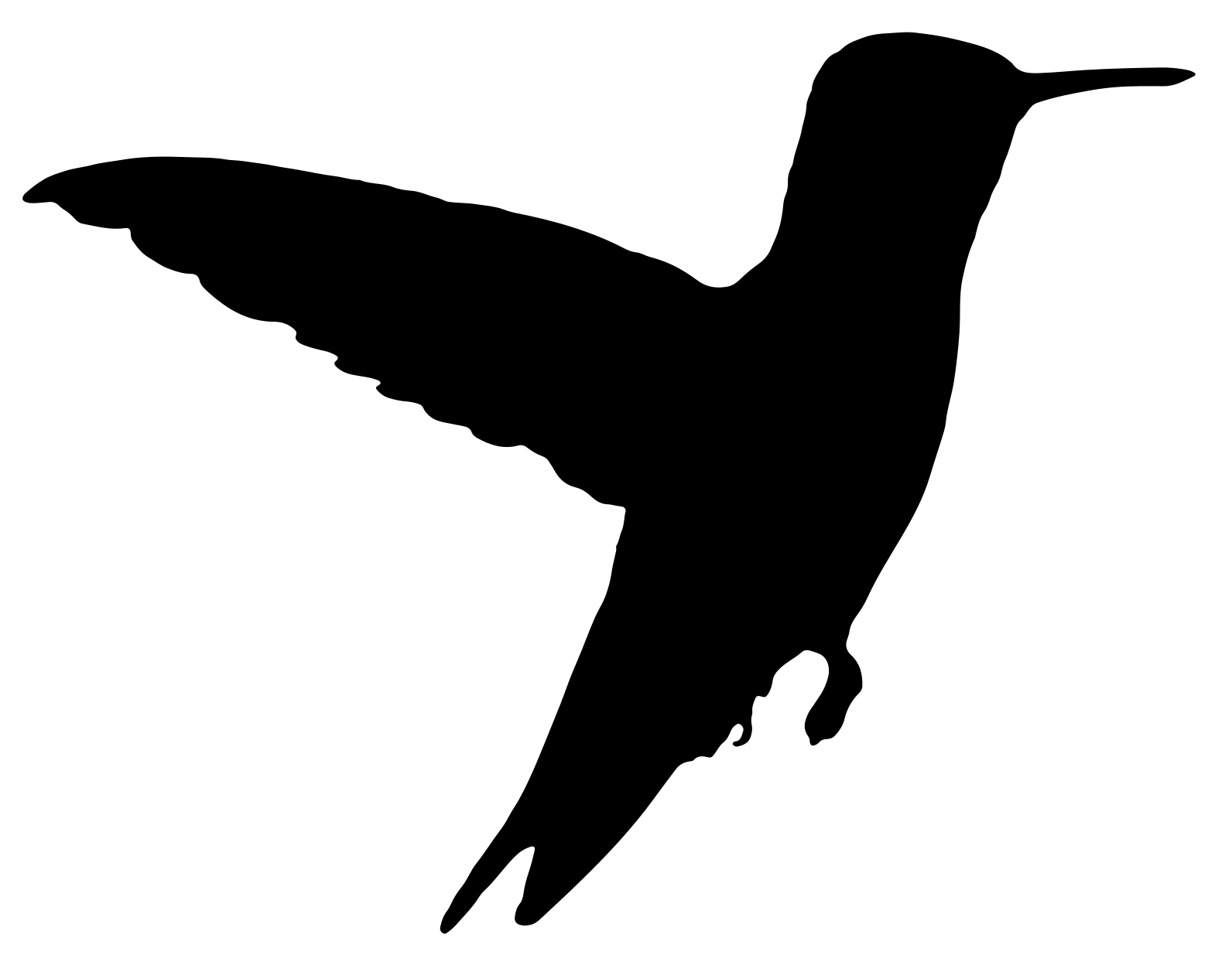 Naklejka na ścianę koliber 3
