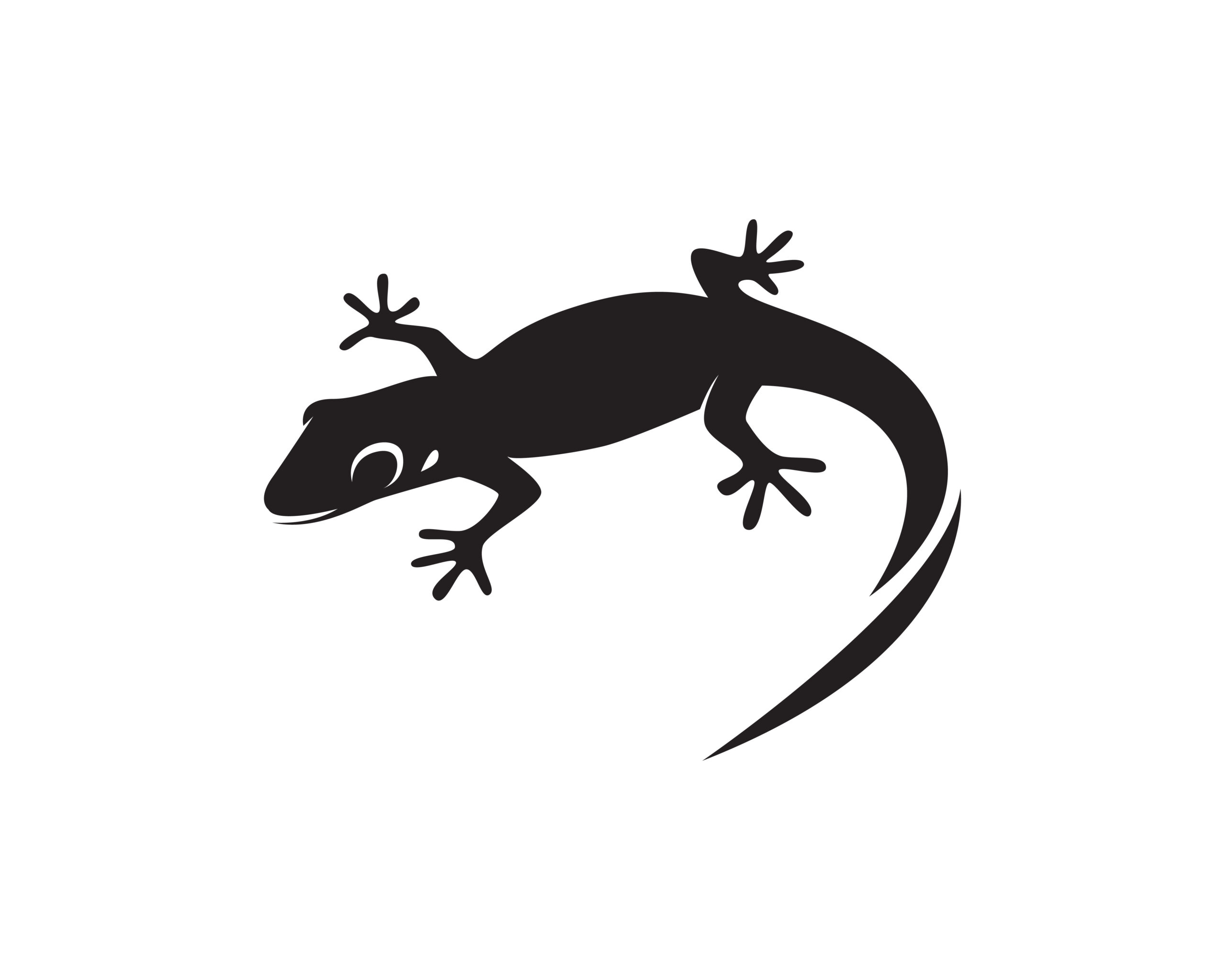 Naklejka na ścianę gekon jaszczurka