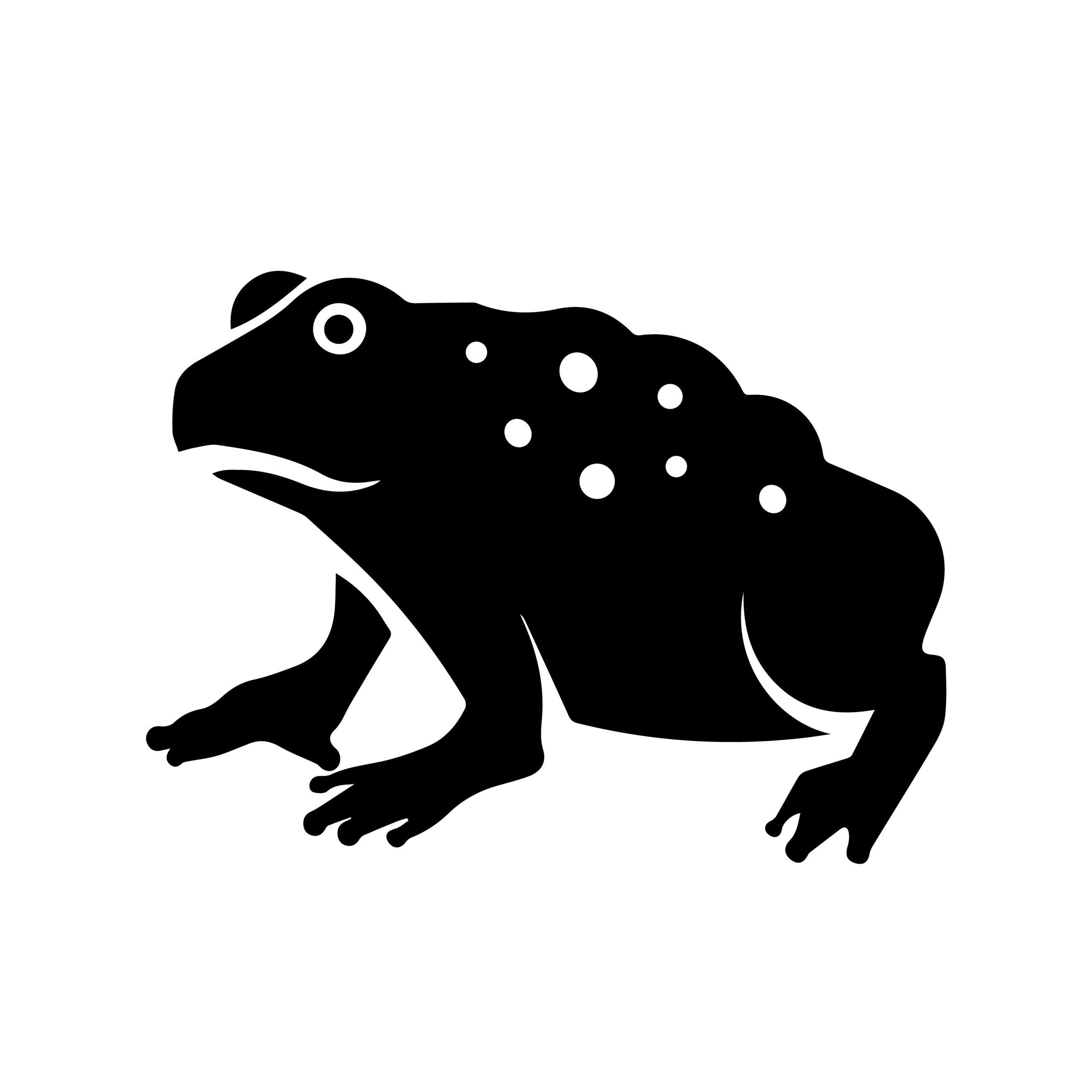 Naklejka na ścianę ropucha żaba