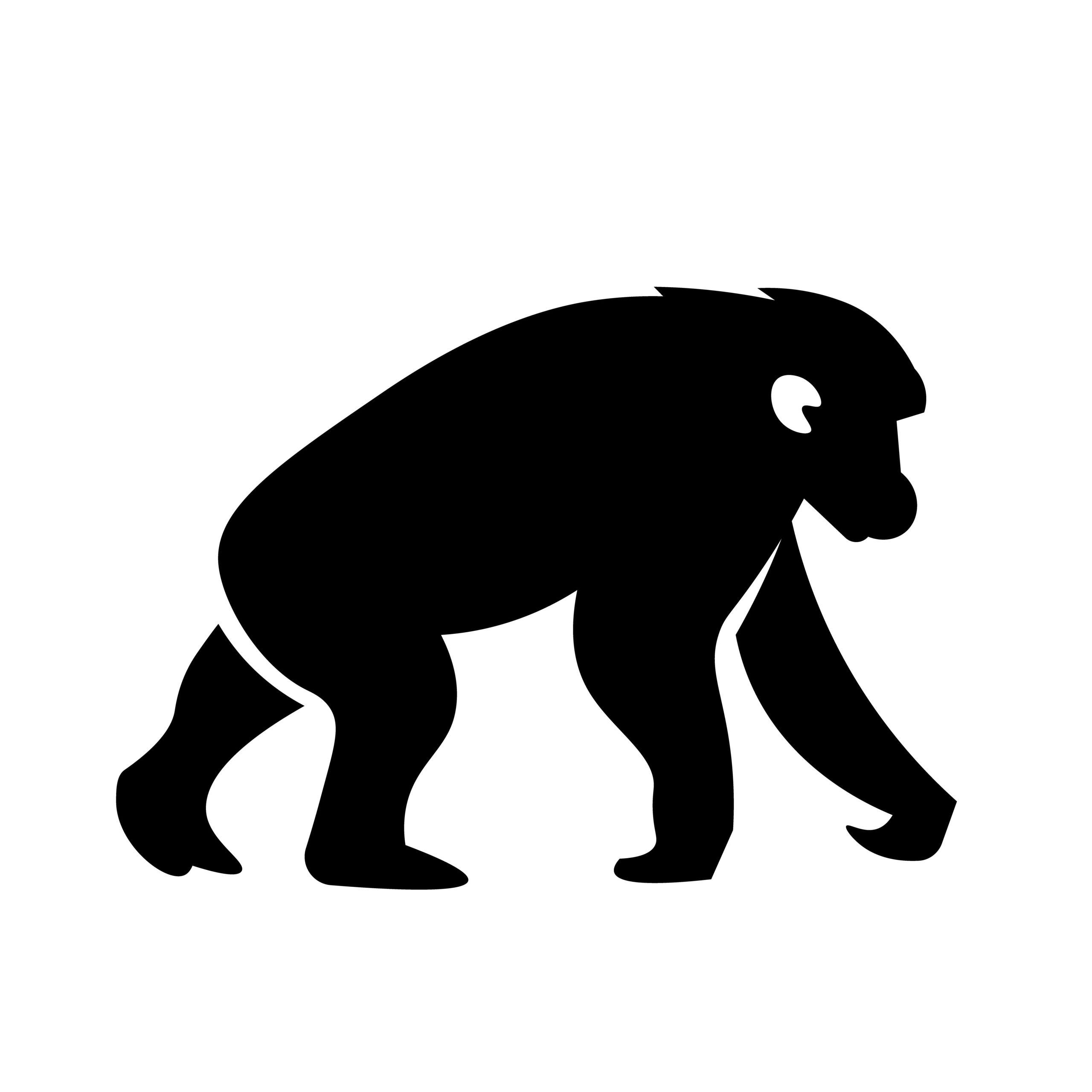 Naklejka na ścianę szympans