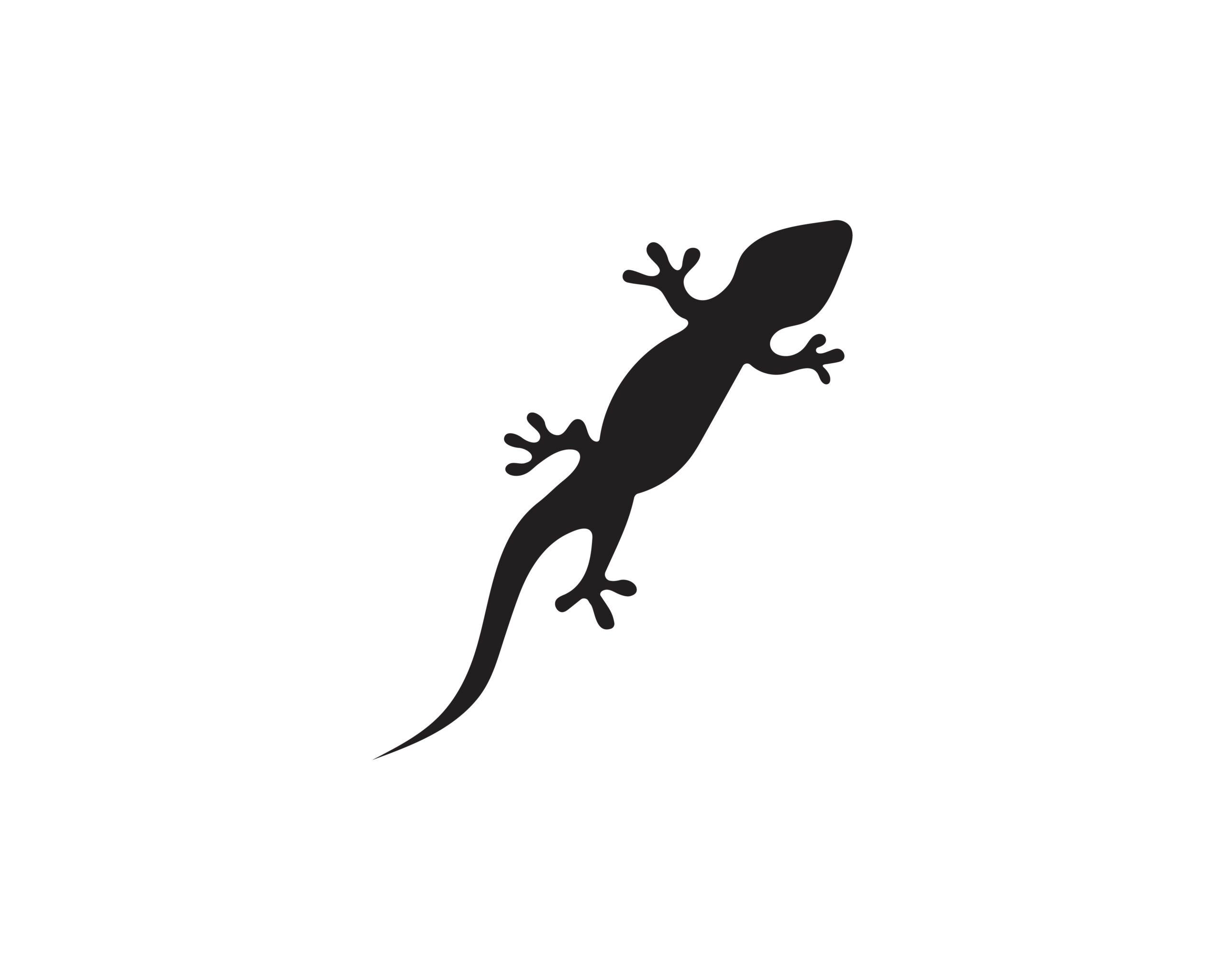 Naklejka na ścianę jaszczurka gekon