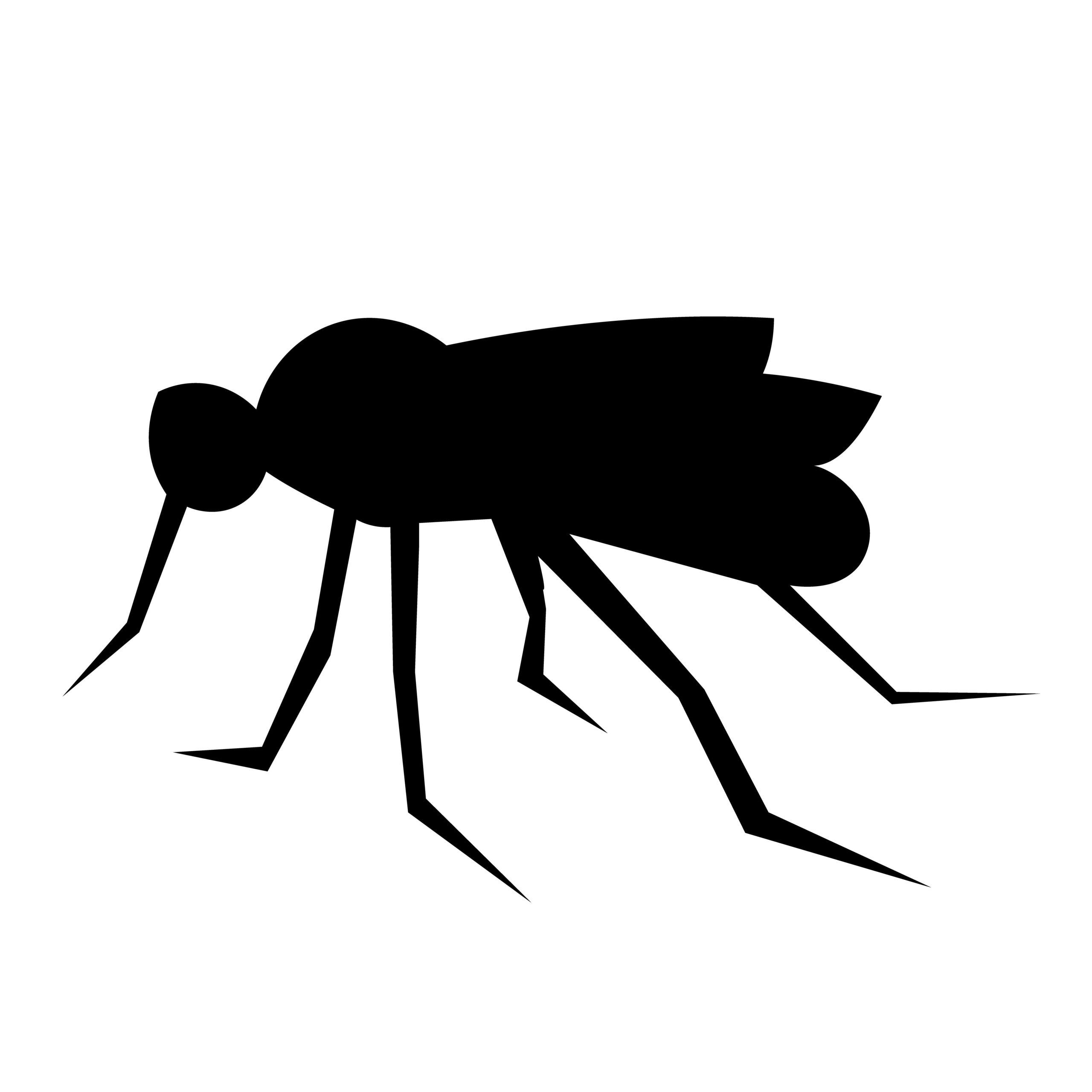 Naklejka na ścianę komarzyca