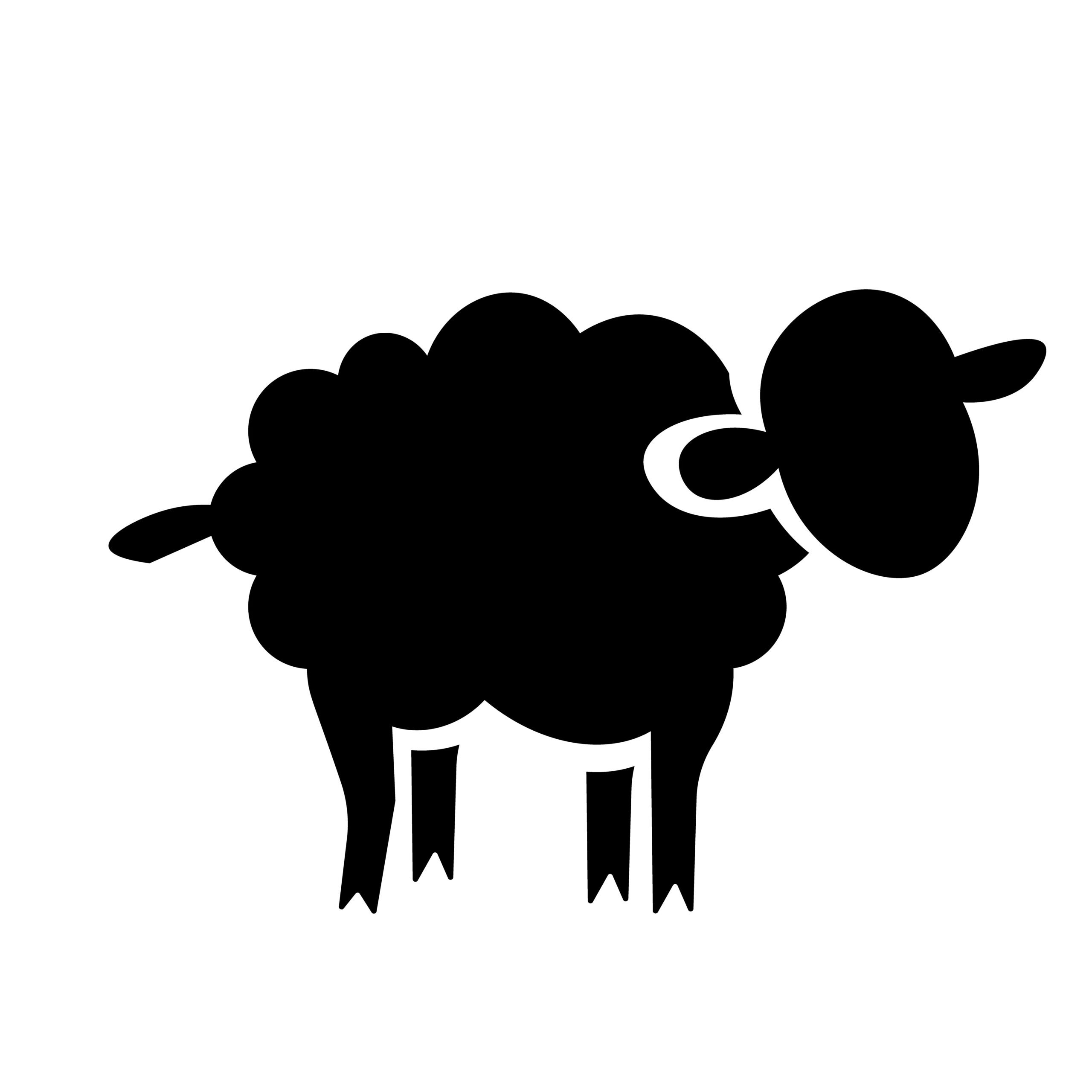 Naklejka na samochód owca